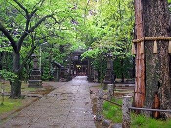 赤坂氷川神社2.jpg